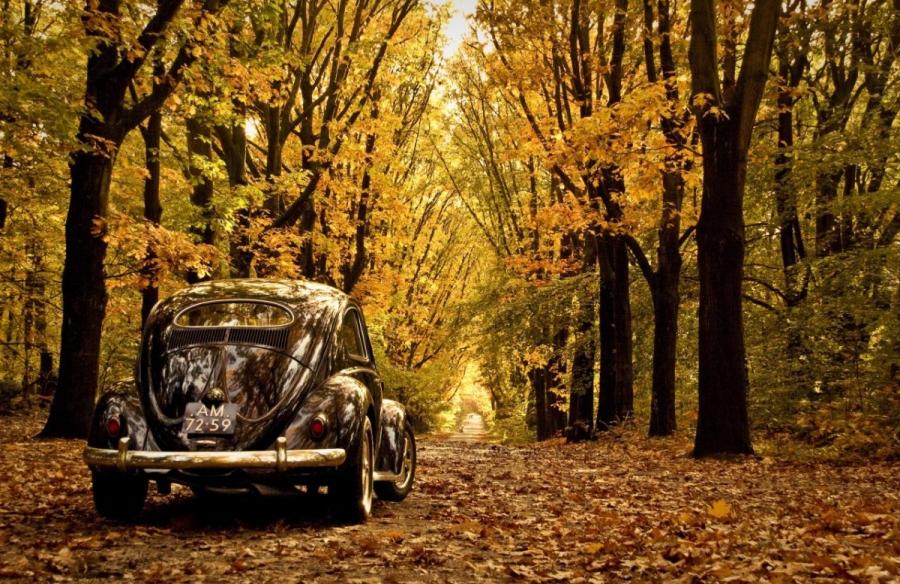 Осень наступила, а автомобиль ещё не готов? Эти советы помогут встретить холода во всеоружии!